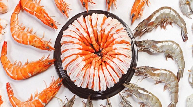 ap5i shrimp - udang supplier