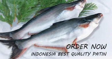 Indonesian Pangasius/ Patin