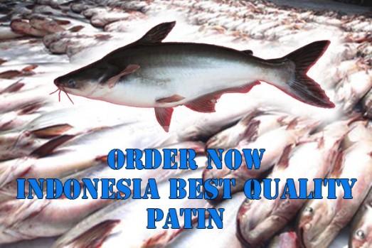 INDONESIAN PATIN