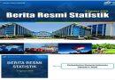 Pertumbuhan Ekonomi Indonesia Kuartal II – 2020