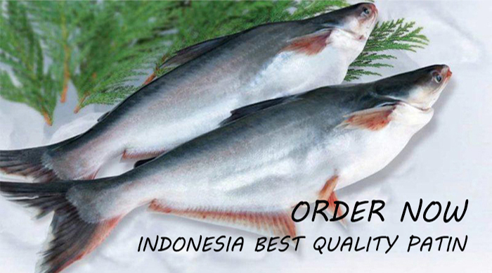INDONESIAN PATIN